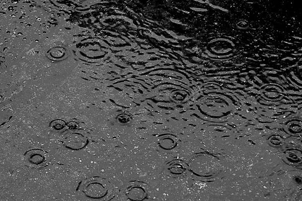 ft-rain-water-harvesting